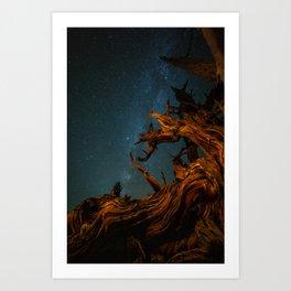 Golden Pine. Art Print