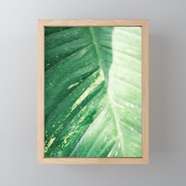 The green leaf | Botanical fine art photography print | Colorful pastel tones photo print Framed Mini Art Print