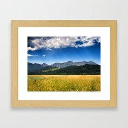 The Bridgers Framed Art Print