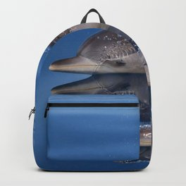 Beautiful Spotted dolphins Stenella frontalis Backpack