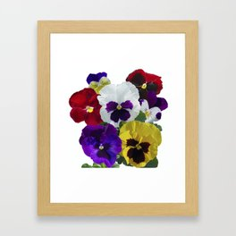 Pansies! Framed Art Print