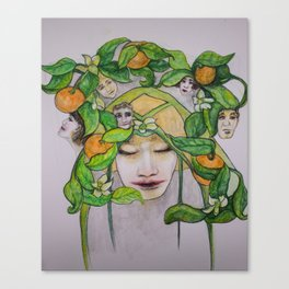 In the Citrus Family Canvas Print