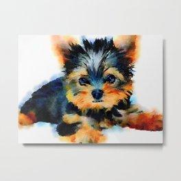 Yorki Pup Metal Print