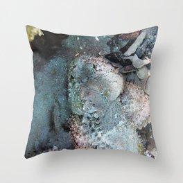 Watercolor Fish, Spotted Scorpionfish 01, St John, USVI Throw Pillow
