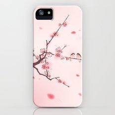 Oriental cherry blossom in spring 005 iPhone (5, 5s) Slim Case