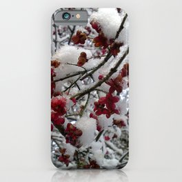 Snow On Red Flowers Winter Herefordshire English Countryside iPhone Case