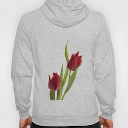 Two red tulip heads and green leaves Hoody