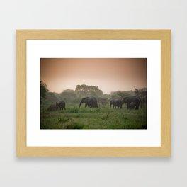 elephants , kruger national park Framed Art Print