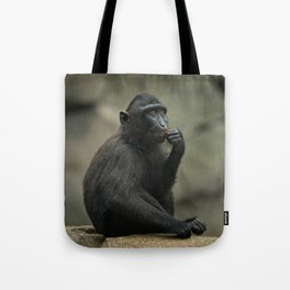 Celebes Crested Macaque Youngster Tote Bag