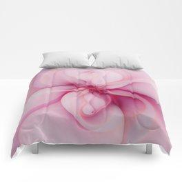 Raspberry Creme Delight Comforters