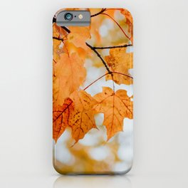 Orange Autumn Leaves iPhone Case