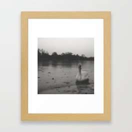 Witchcraft IV - Swan Framed Art Print