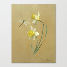 Daffodil and Dragonfly Canvas Print