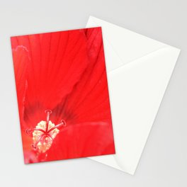 Red Hibiscus | Flower | Flowers | Nadia Bonello | Canada Stationery Cards