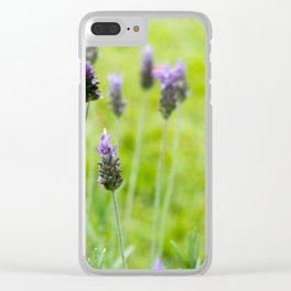 Lavender season Clear iPhone Case
