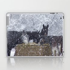 Cold Winter Laptop & iPad Skin