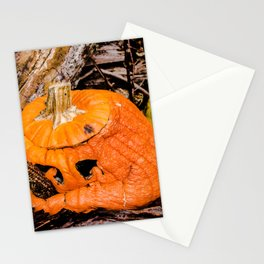 Decaying Pumpkin Stationery Cards