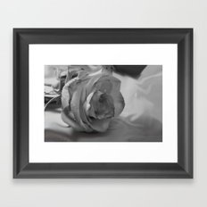 Black and White Rose Framed Art Print