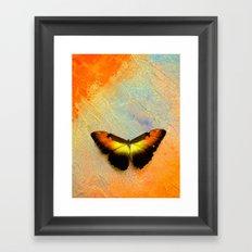 Golden Morpho Framed Art Print