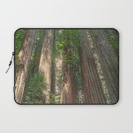 STOUT GROVE REDWOODS 4 LOOKING UP INTO THE TREES Laptop Sleeve