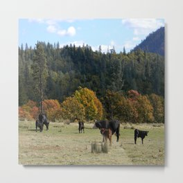 Out on the range... Metal Print