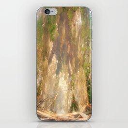 """Mountain Ash Tree (Aka """"The Big Boy"""") iPhone Skin"""