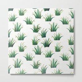 Field of Aloe Metal Print