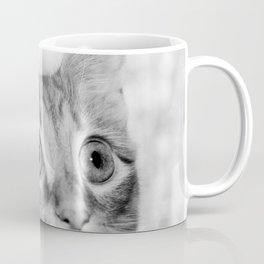 What's New KittyCat Coffee Mug