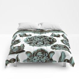 Ernst Haeckel Bats Moonlight Comforters