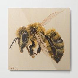 Bee IV (Leon) Metal Print