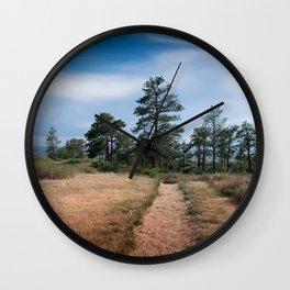 Zimmerman Park Wall Clock