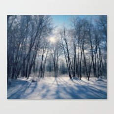 Winter reflection Canvas Print