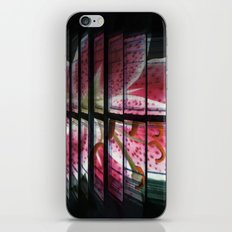 The many Parts of the Whole iPhone & iPod Skin
