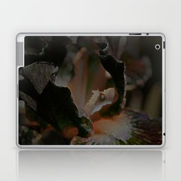iris Laptop & iPad Skin