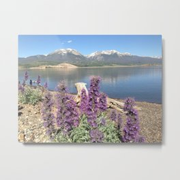 Mountain Lakes & Wildflowers Metal Print