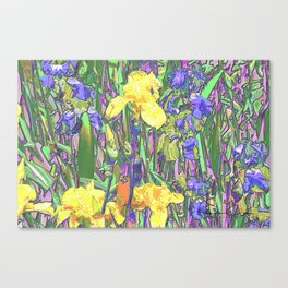Blue & Yellow Iris Garden - Abstract Canvas Print