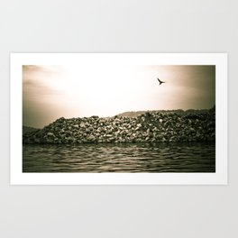At the River... Art Print