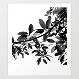 clara meer 2 Art Print