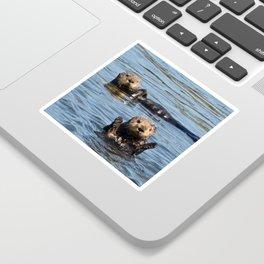 sea otter hello Sticker