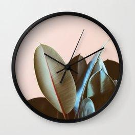 Ficus Elastica #1 Wall Clock
