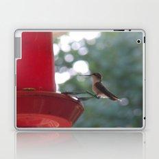 Hummingbird w/ bokeh Laptop & iPad Skin