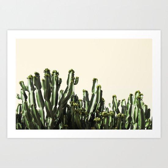 cactus nature VI Art Print