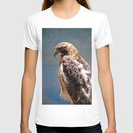# 300 T-shirt