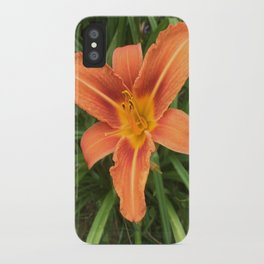 Hemerocallis Day Lily iPhone Case