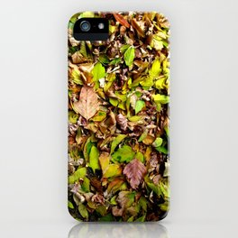 Underfoot iPhone Case