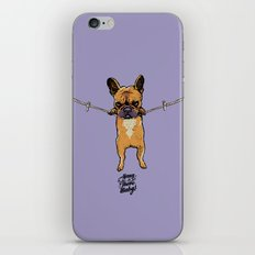 Hang in There Baby Frenchie iPhone Skin