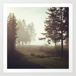 A Walk in the Trees Art Print