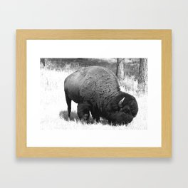 A Wild Guy Framed Art Print