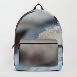 Cozy Cat Sleeping on Denim Jacket Backpack