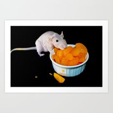 Perla the hairless rat Art Print